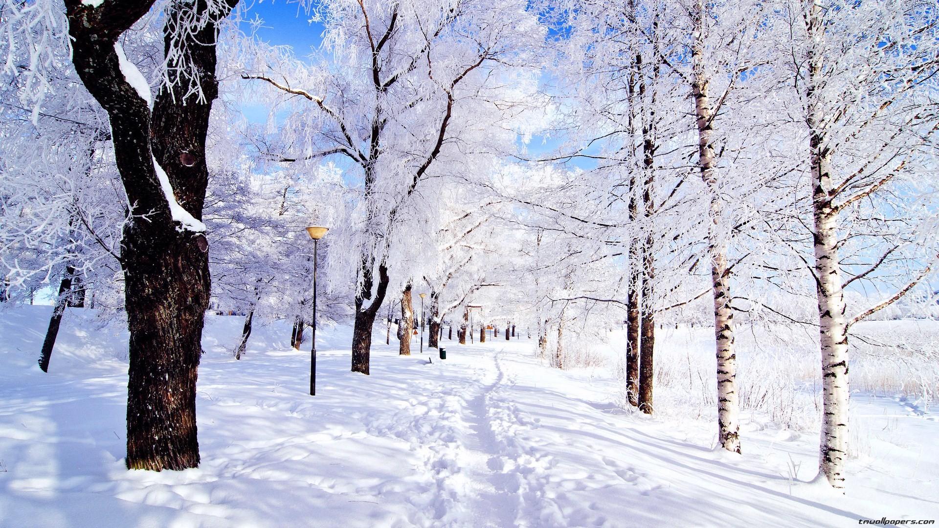 Sfondi desktop inverno 42 immagini for Immagini inverno sfondi