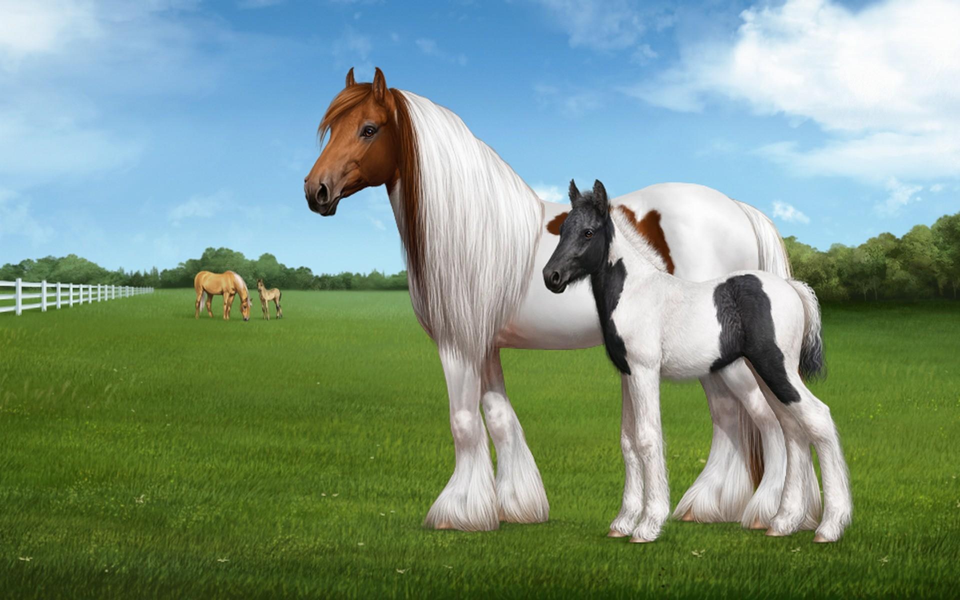Horse Wallpaper 61 Immagini