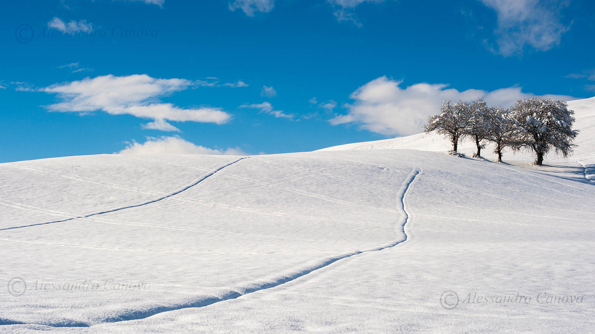Sfondi Neve Desktop 36 Immagini