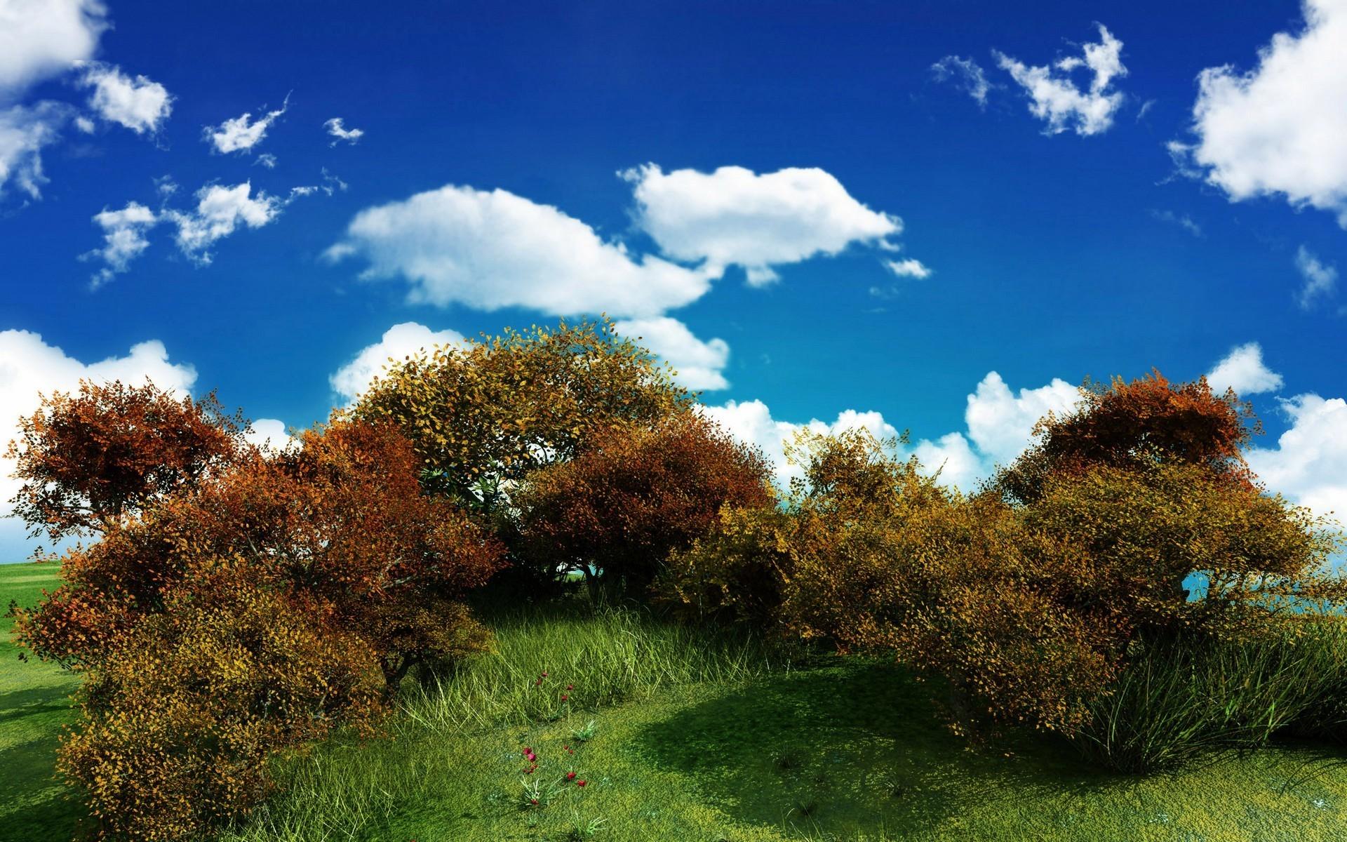 Sfondi bellissimi hd 87 immagini for Sfondi hd natura