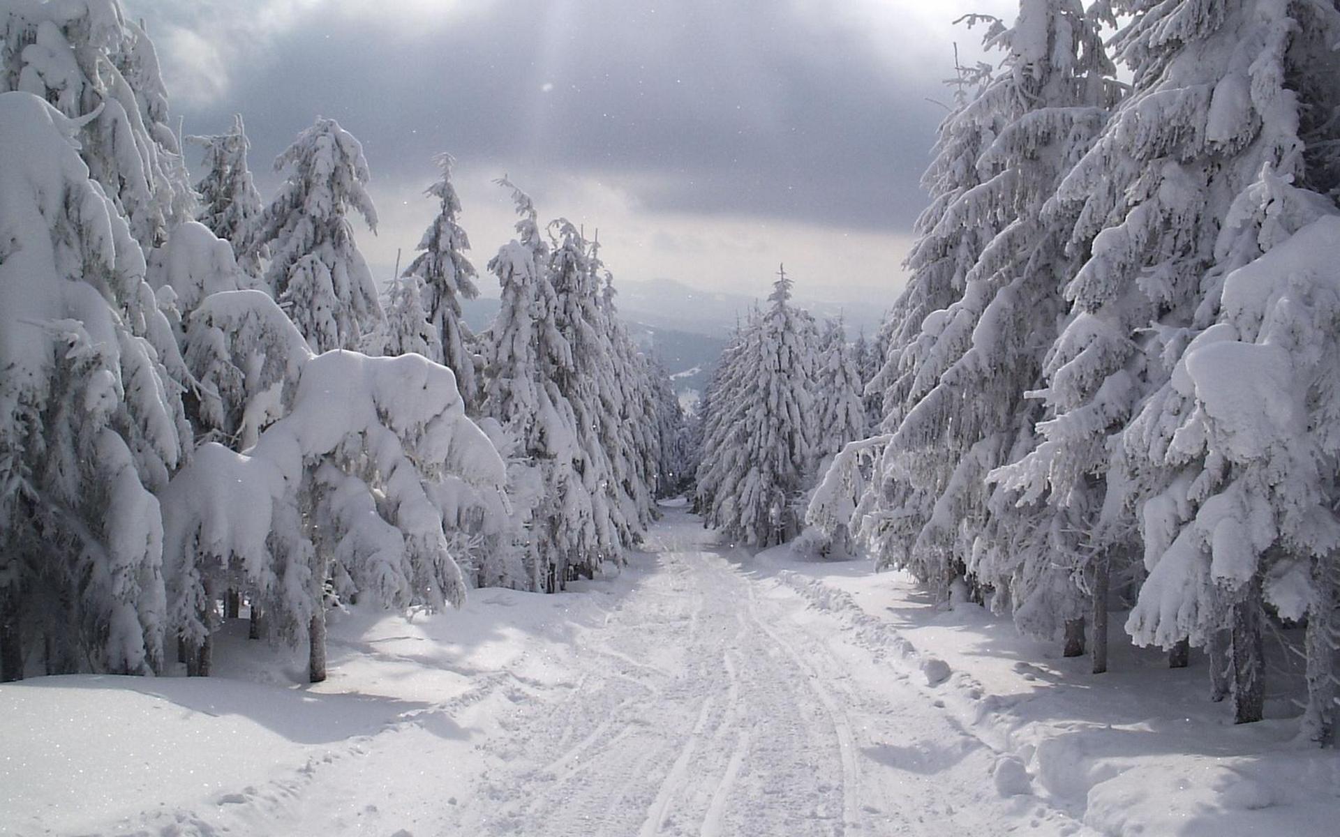 Sfondi gratis per desktop paesaggi invernali sfondi for Foto inverno per desktop
