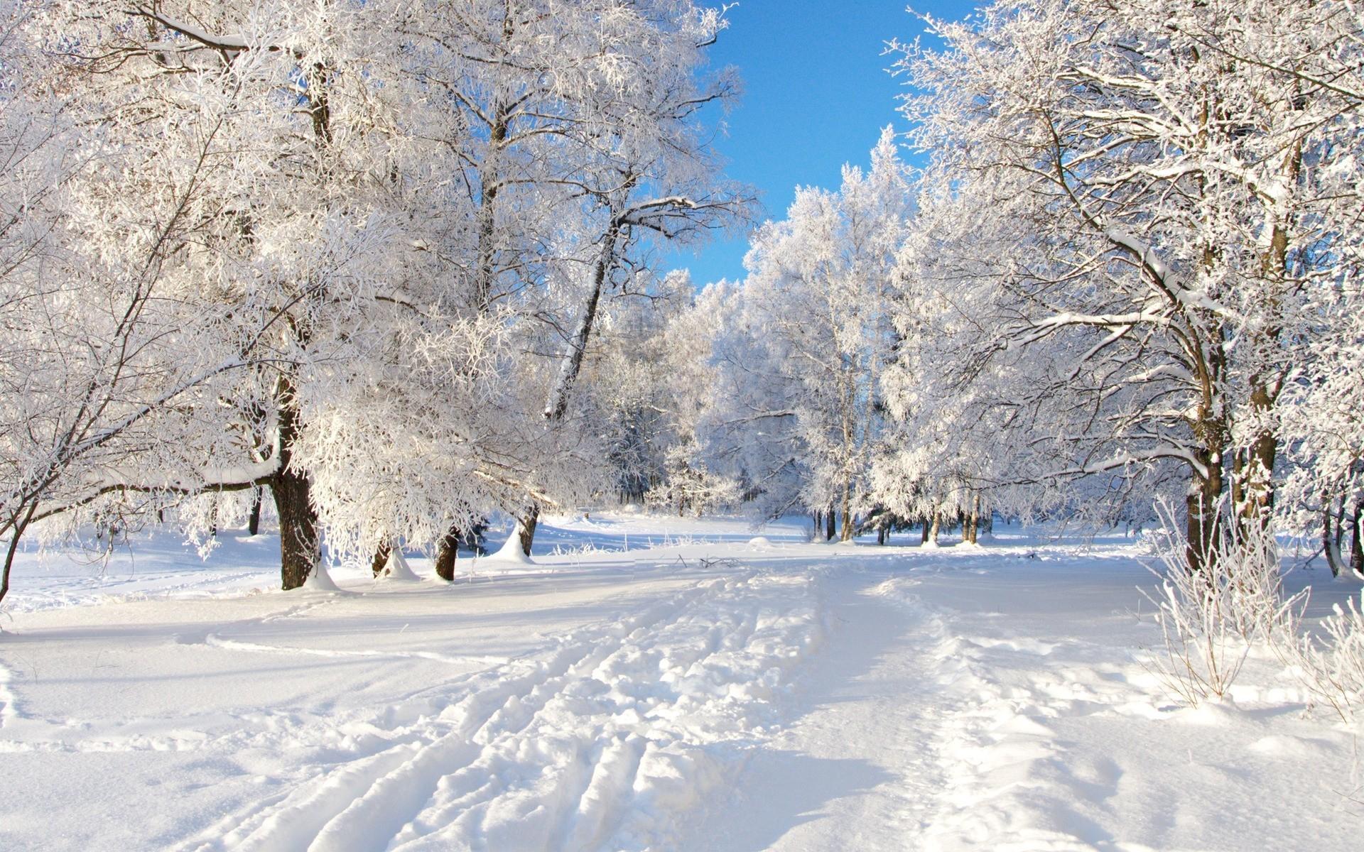 sfondi invernali 76 immagini