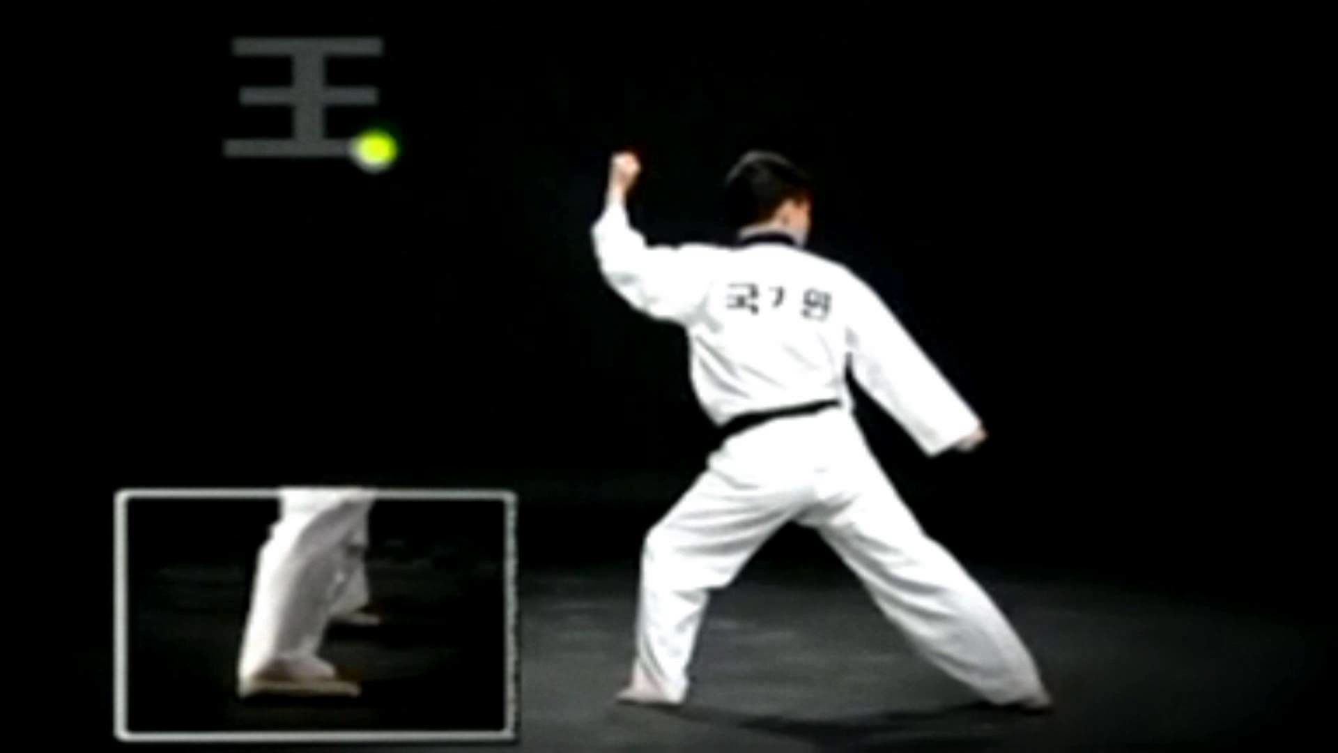 Taekwondo Quotes Taekwondo Wallpaper 60 Immagini