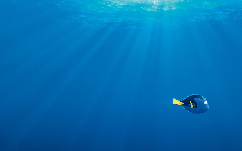 Sfondi bolle 67 immagini for Sfondo animato pesci