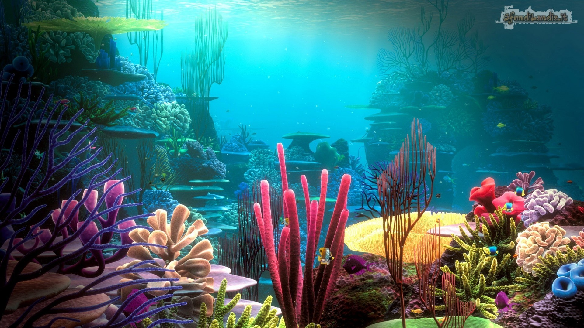 Sfondi acquario 61 immagini for Sfondilandia mare