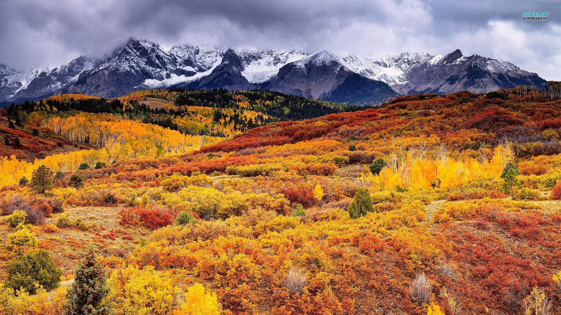 Sfondi desktop autunno 49 immagini for Immagini autunno hd