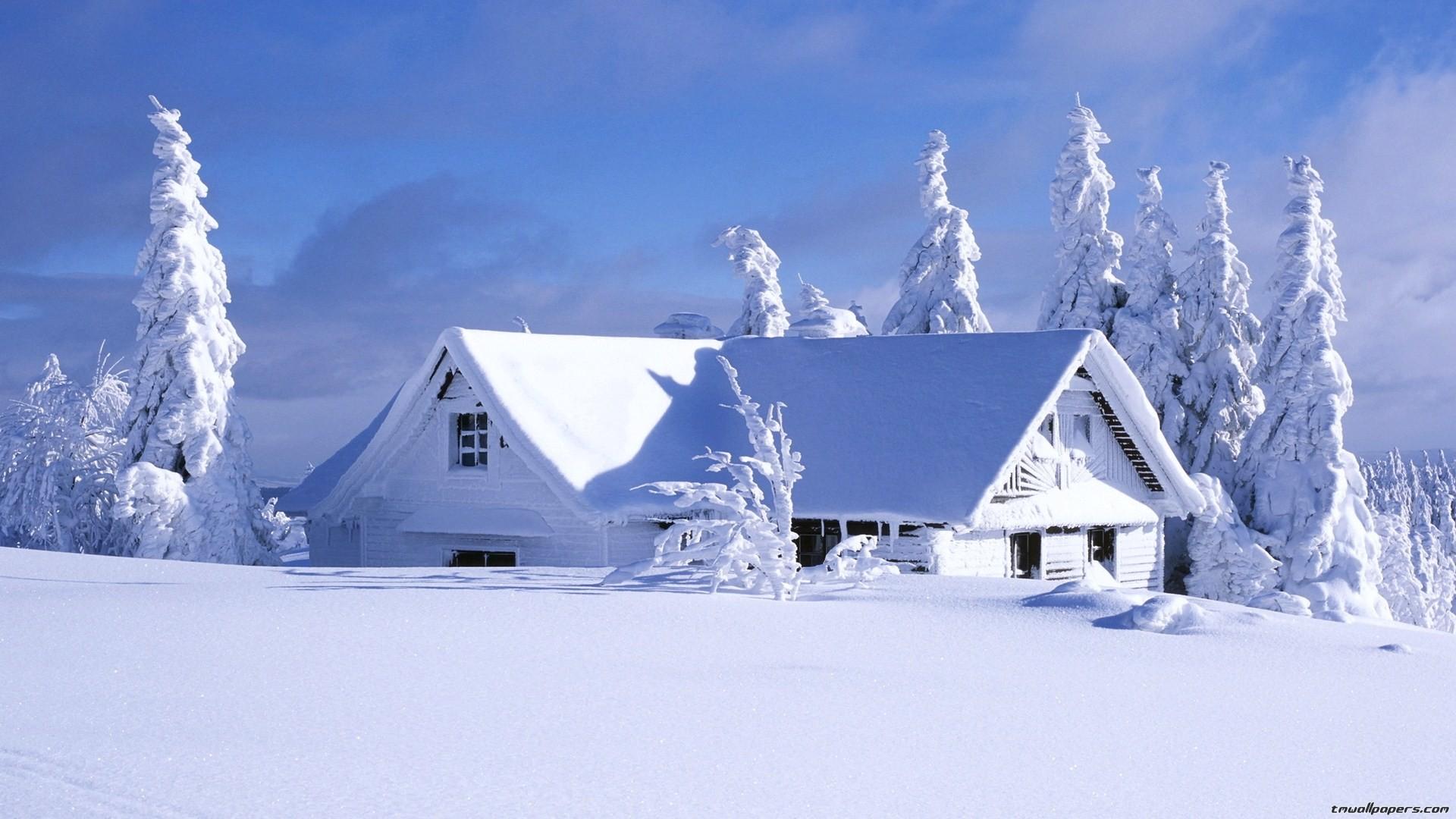 Sfondi desktop inverno 42 immagini for Immagini per desktop inverno