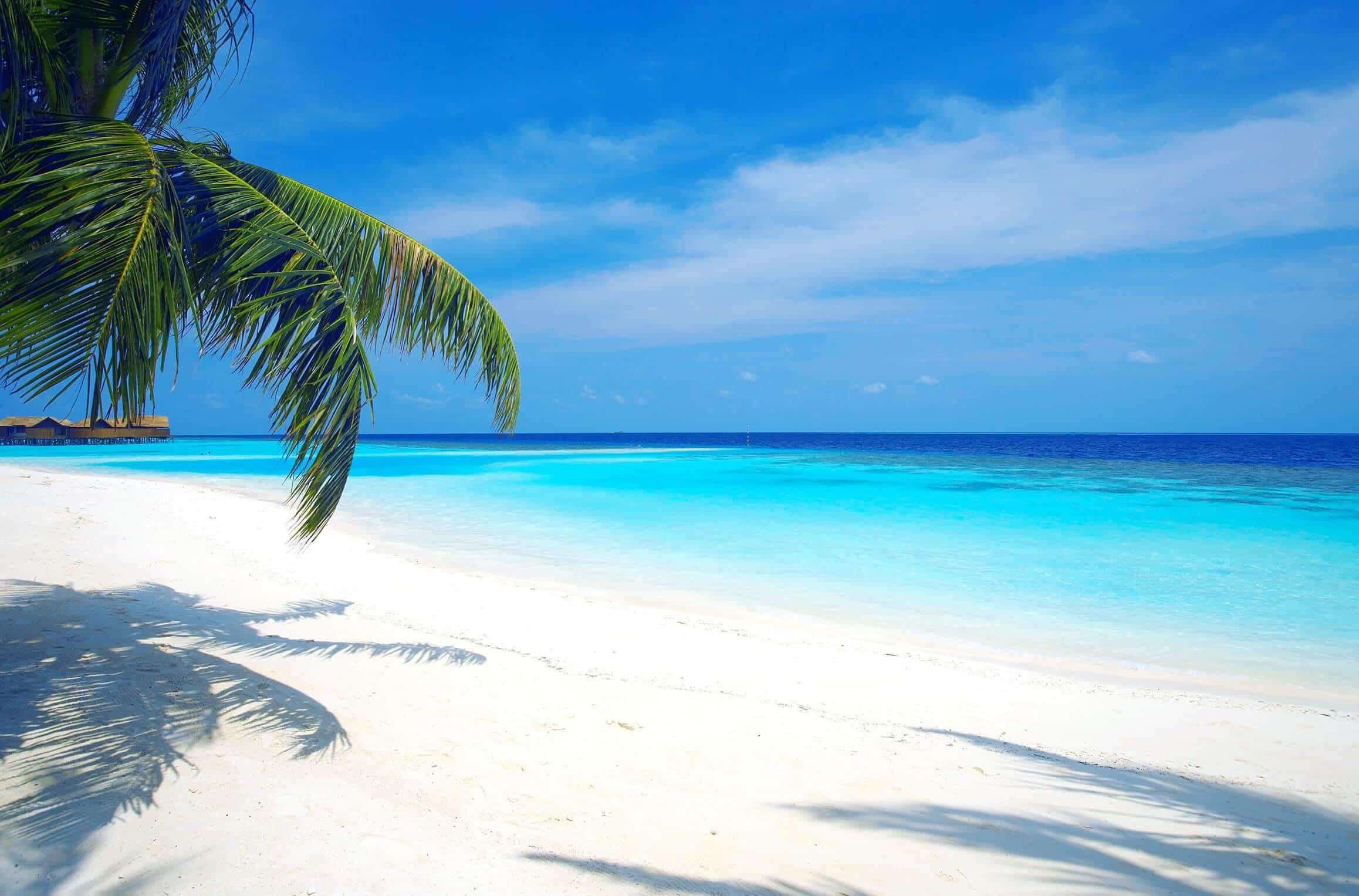 Sfondi Maldive (56+ Immagini