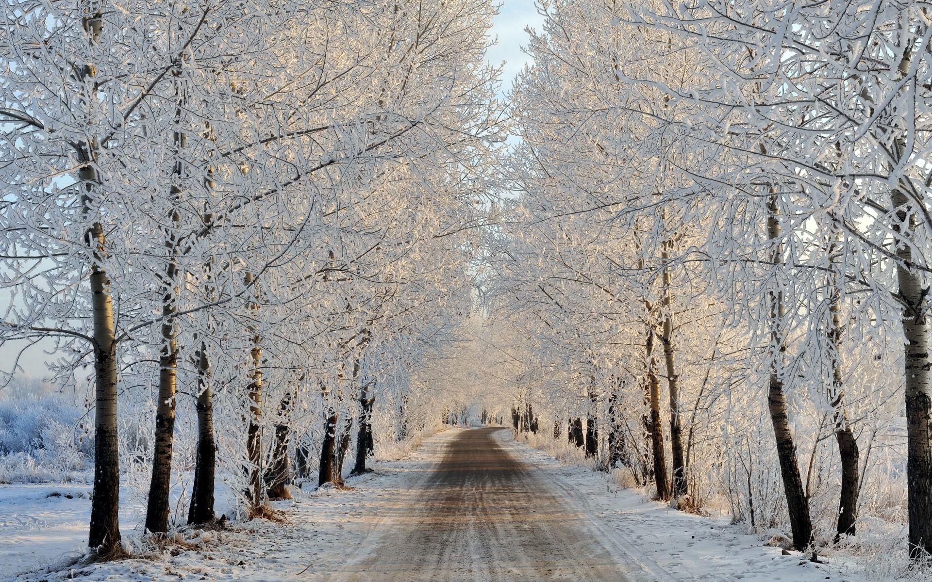 Sfondi tumblr bianco e nero 62 immagini for Sfondi gratis desktop inverno