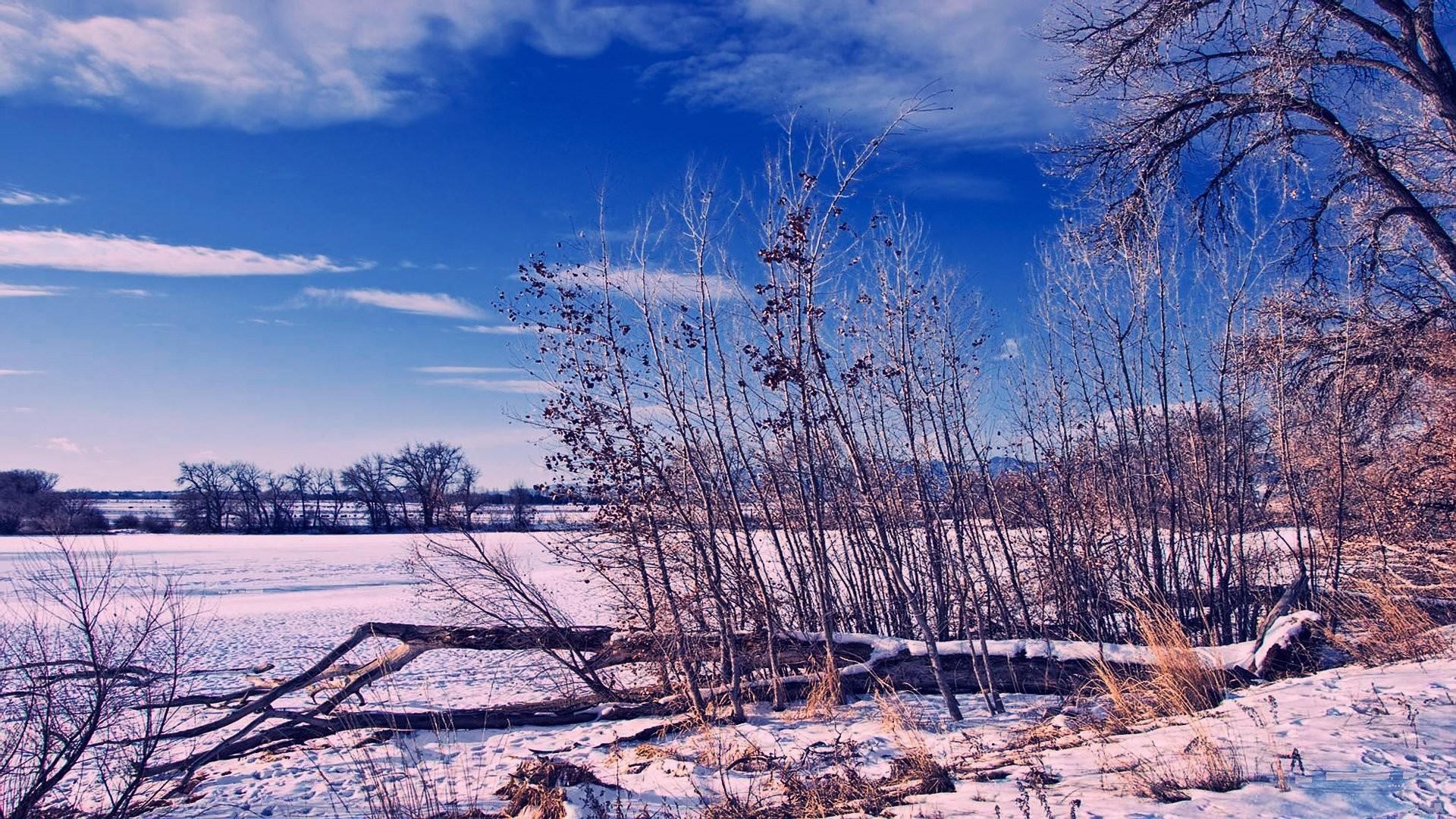 sfondi desktop inverno 42 immagini On sfondi gratis desktop inverno